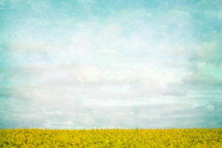 Summertime fields vintage landscape
