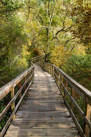Wooden walkway in Mao River Canyon, Ribeira Sacra, Galicia, Spain