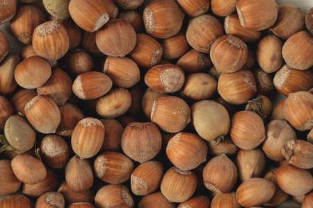 Ripe hazelnuts, Corylus avellana fruits top view