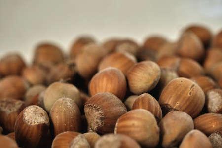 Ripe hazelnuts, Corylus avellana fruits close up, selective focus