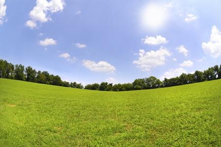 青い空と緑の草、暖かく、晴れた日に