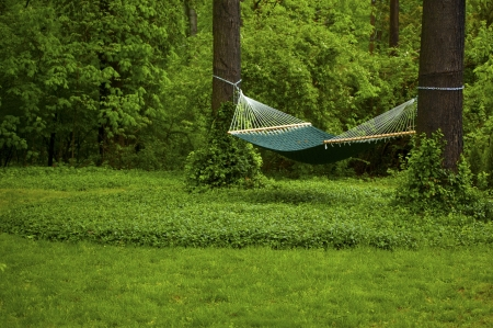 Green Hammock Scene Zdjęcie Seryjne