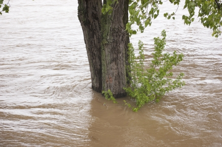 dumps: Rising Floodwater on a River Stock Photo