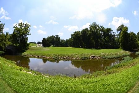 Green and Luscious Golf Fareway