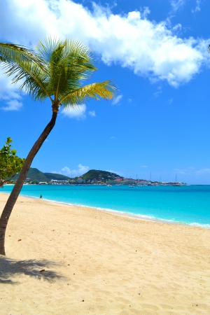 Tropical Caribbean Beach on a Sunny Summer Day