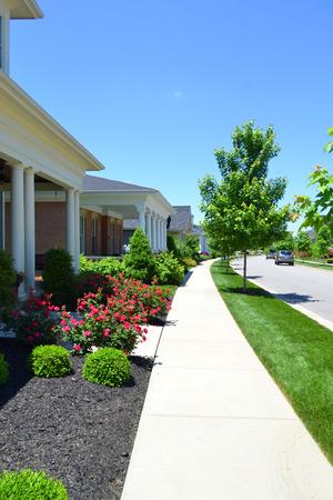 community garden: Beautiful, New Suburban Neighborhood in the Summertime