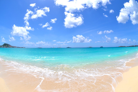 Beautiful Tropical Beach on a Sunny, Summer Day
