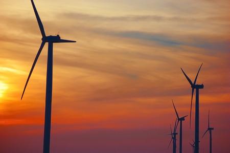 Wind Turbine Silhouettes at Sunset
