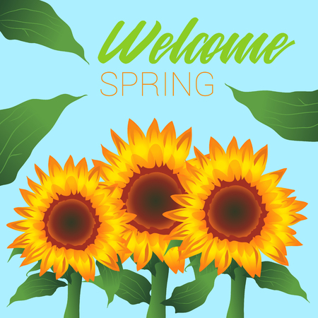 Welcome Spring, Sunflowers and Leaves, Background