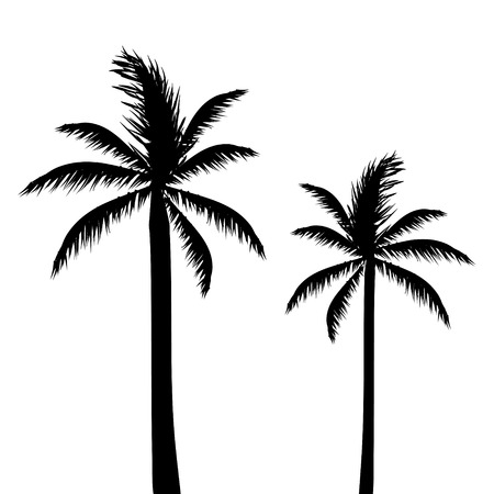 Abstract Palm Trees, Silhouette 向量圖像