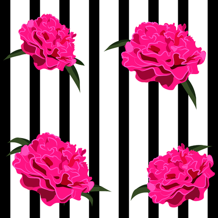 Peonies, Black and White Stripes Illustration