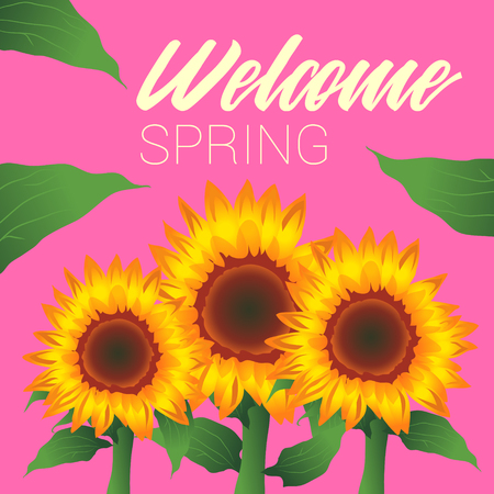 Welcome Spring, Sunflowers, Leaves, Pink Background