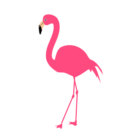 Pink Flamingo, Vector Illustration 版權商用圖片 - 117687607