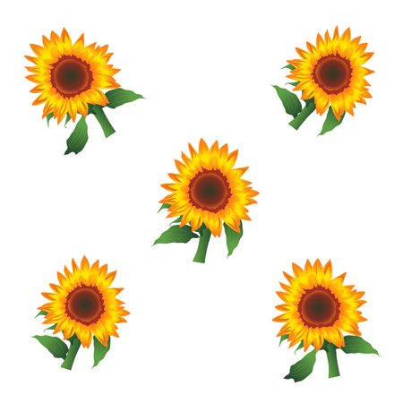 Sunflowers Vector Illustration, Background