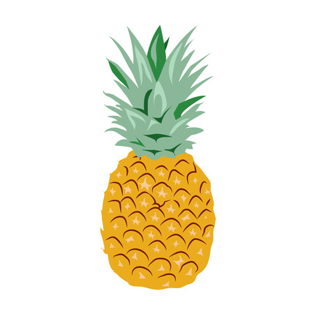 Pineapple Illustration Stock Illustratie