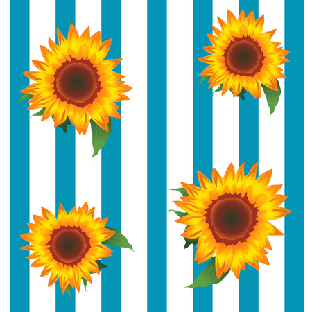 Sunflowers, Striped Background