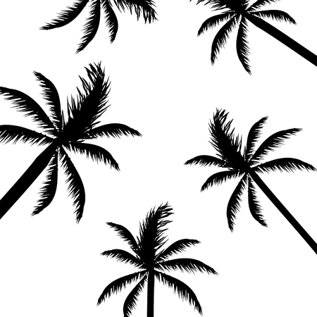 Abstract Palm Trees, Background
