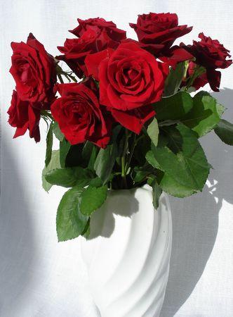 Red roses on white linen                               photo