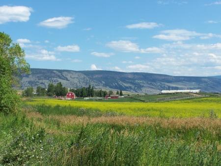 ranching: Red barn yard scenic