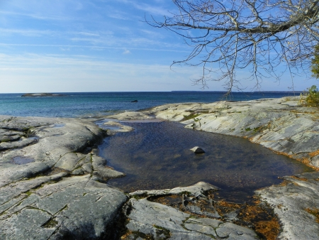 pooled:  Pooled water on rock shore