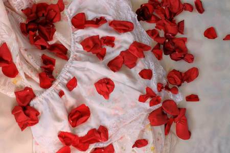 silky lingerie: Silky Lingerie and rose petals