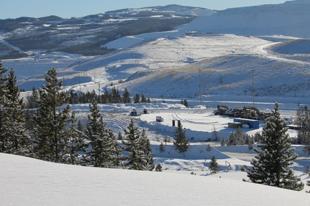 treed: Treed hills over the mine winter scenic