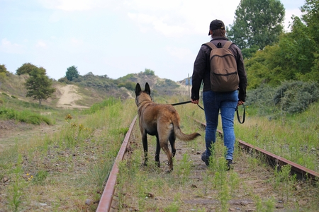 A master and his dog on a walk along the rails near the dunes