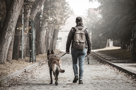 Malinois dog and his master walking on a stone path Stock Photo