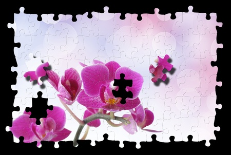 Puzzle of pink orchid against bokeh background Stock Photo - 8386897