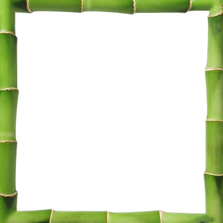 Bamboo frame whit copy space