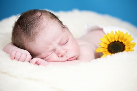 Adorable newborn with sunfower on soft blanket Stock Photo - 10415380