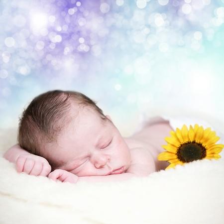 baby sleep: Adorable newborn baby in sweet dreams Stock Photo