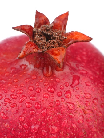 Close up of pomegranate fruit photo