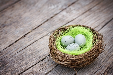 Three little eggs in bird nest on wooden table photo