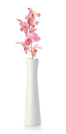 白で隔離される白い花瓶のピンクの蘭の花 写真素材