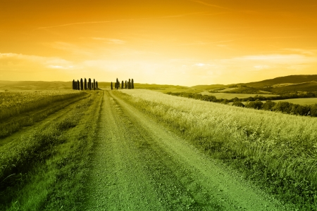 Typical tuscany landscape in the evening Stock Photo - 14481848