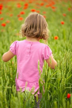 petite fille avec robe: Petite fille dans un champ de pavot belle Banque d'images