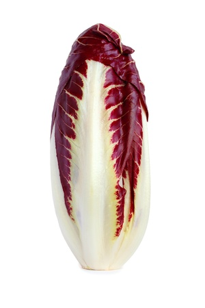 Radicchio chicory isolated on white  Stock Photo - 18133455