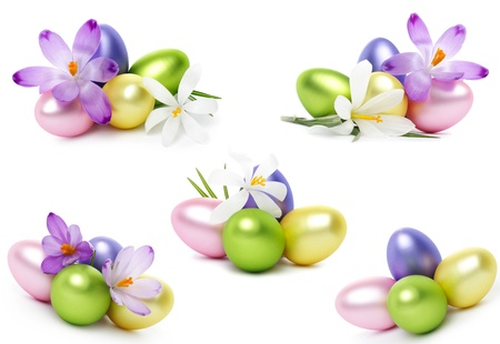 Easter eggs with crocus flower isolated on white photo