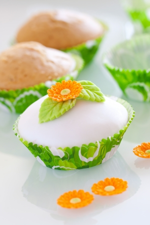 Beautiful  cupcake with spring decoaration Stock Photo - 18179654