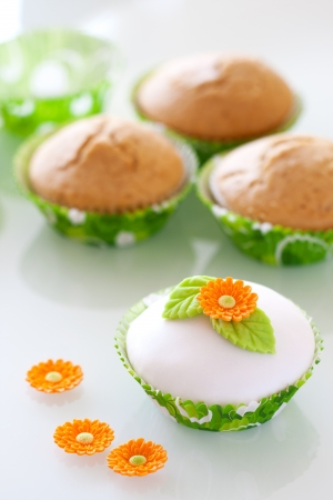 Beautiful  cupcake with spring decoaration Stock Photo - 18179652