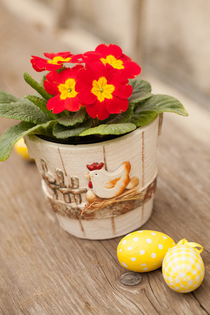 Easter eggs and primula flower in decorated pot