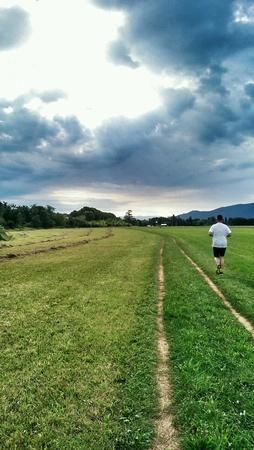 man: Man running in nature
