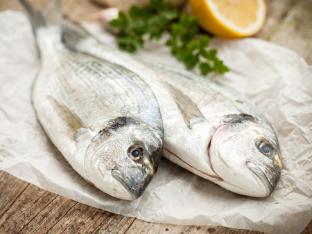 gilthead: fresh gilt-head sea bream fish with ingredients