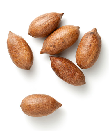 nutshells: Pecan nuts in nutshells isolated on white background