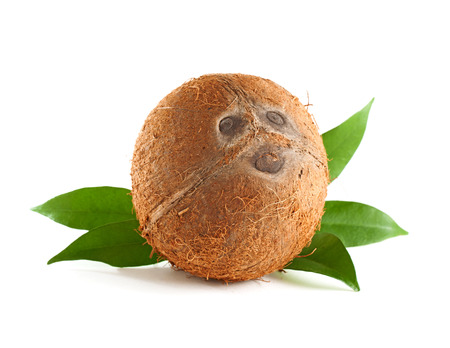 funny fruit: Whole coconut with leaves isolated on white