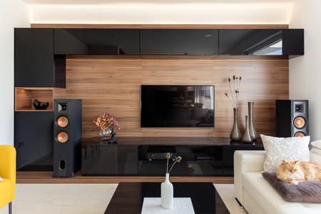 Salon élégant avec des armoires en noir et chêne Banque d'images - 66133402