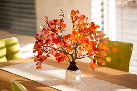dinning: Smoke tree branches on the dinning table Stock Photo