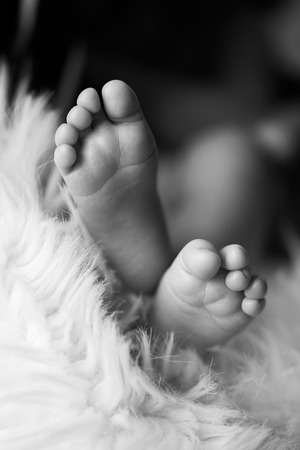 inocent: Close up of baby feet in warm blanket Stock Photo