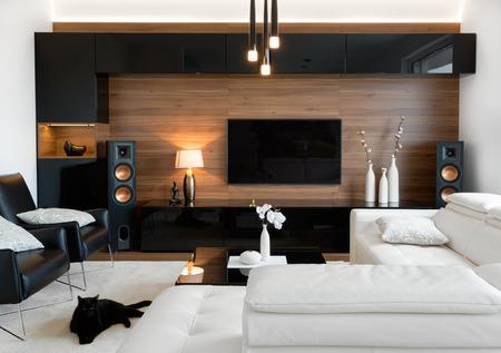 Modernes Wohnzimmer Interieur von echtem Zuhause Standard-Bild - 73048207